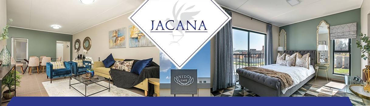 jacan-1